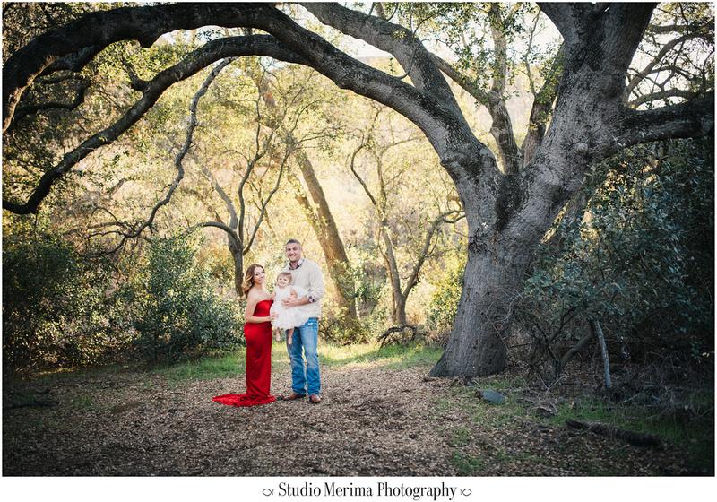 elfin forest family photography, san diego forest photography, oak trees san diego, san diego family photographer