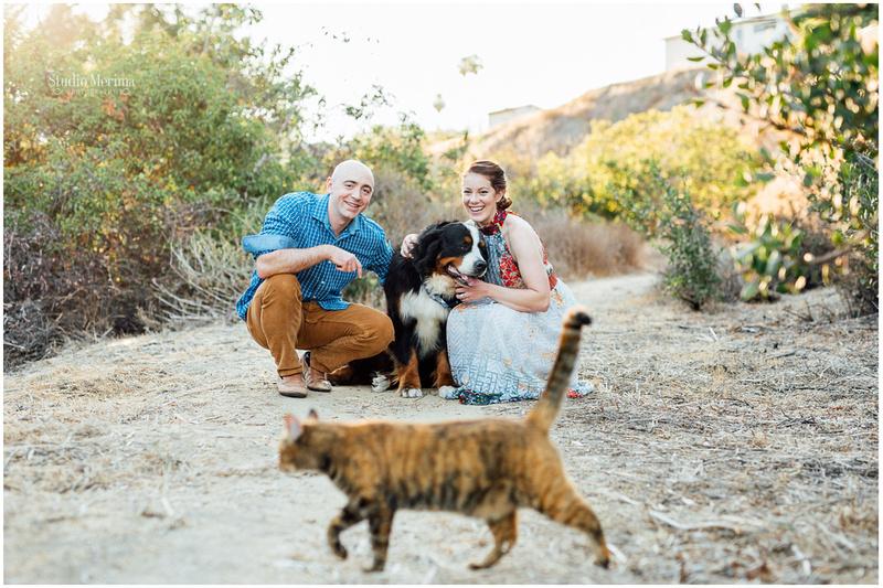 """carlsbad photographer"", ""dog engagement photos"", ""engagement photos"", ""fun engagement"", ""pet engagement photos"", ""san diego photographer"", ""unique engagement"", 'bernese mountain dog', 'dog and cat photography', 'cat engagement photography', 'cats are too cool'"