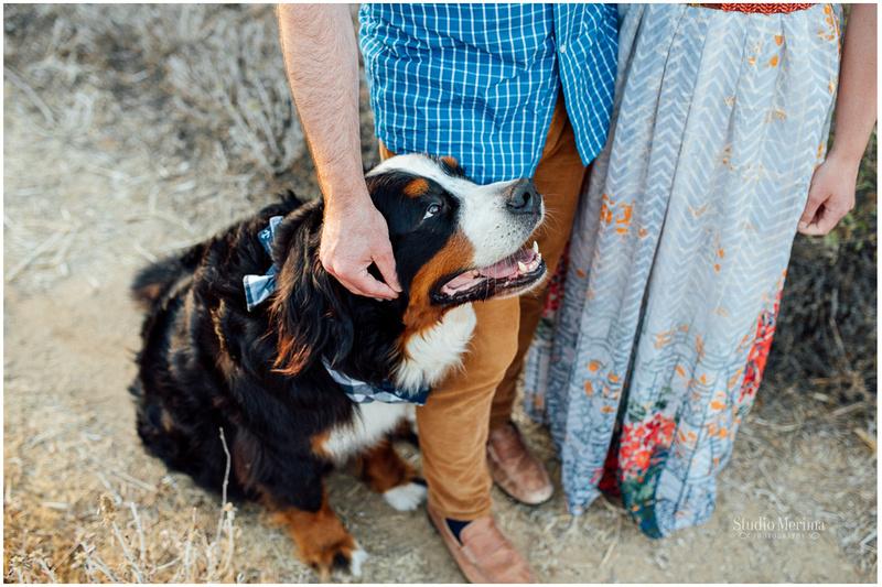 """""""carlsbad photographer"""", """"dog engagement photos"""", """"engagement photos"""", """"fun engagement"""", """"pet engagement photos"""", """"san diego photographer"""", """"unique engagement"""", 'bernese mountain dog'"""
