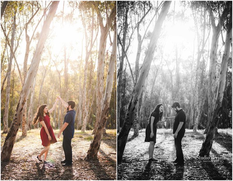 morley field engagement photography, balboa park engagement photography, san diego engagement photography, san diego wild flowers engagement photography