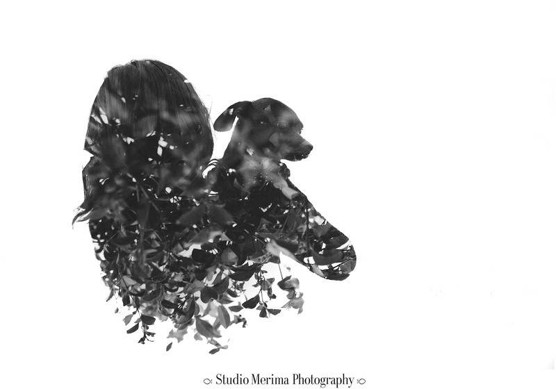 san diego pet photography, del mar dog beach photography, san diego dog photographer, fine art pet photography, double exposure pet photography, black and white dog photography