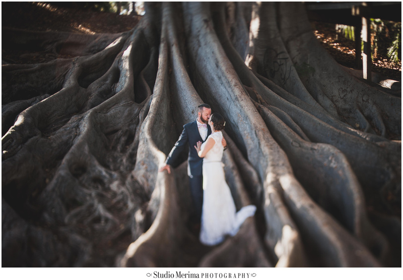 """Big Tree Balboa Park Photography"" ""Big Tree Balboa Park Wedding Portraits"""