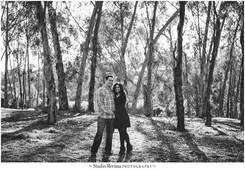 eucalyptus trees engagement, san diego couples photography, morley field engagement photography